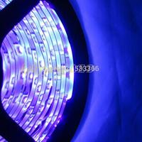 16.4FT 5M DC12V UV ultraviolet IP65-Waterproof 3528 SMD 300 LEDs flexible LED Light Strip with tracking number
