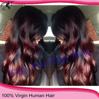New Brazilian virgin human hair two tone ombre glueless full lace human hair wig/lace front wig witn baby hair Bleach knots