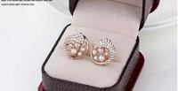 Accessories wholesale fashion earrings female temperament elegant pearl allergy free earrings elegant stud earrings