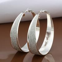 Hot Sale!!Free Shipping 925 Silver Earring,Fashion Sterling Silver Jewelry New Style Earrings SMTE479