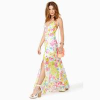 Vestidos Femininos Direct Selling Freeshipping Vestido De Renda Festa Party Dresses Showy Flowers Printing Sling Long Dress