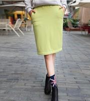 2014 New Fashion Women Winter Short Skirts All Match Solid Color Fleecing Inside Elastic Waist Slim Female Warm Skirts