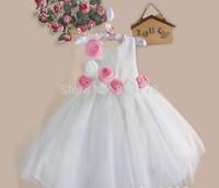 New Baby Party Dress Flower NeckStrap Flower Girl's Dress Special Formal Celebrity Tutu Dress Kid' Princess Dress 3-8Y