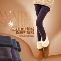 wholesale  2014 Winter fashion stepping foot warm leggings D190