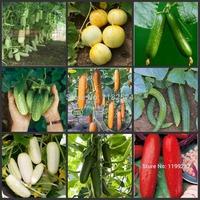 2014 Hot Sale Sale Outdoor Plants Sementes Seeds free Shipping 100pcs 9kinds Heirloom Cucumber Seeds Organic Fruit Vegetables