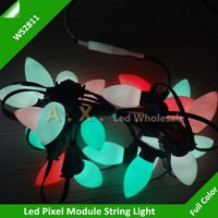 Full Color Led Pixel Module String With C9 Cover;DC5V Input;WS2811 IC , 1000Pcs a String + 1Pcs Remote Controller