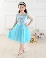 Retail new 2014 Custom-made Movie Cosplay dress summer girls dress Costume Princess Elsa Dress from Frozen for Children