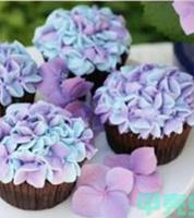 New 2014 Hydrangea Fondant Cake Decorating SugarCraft Plunger Cutter Flower Mold