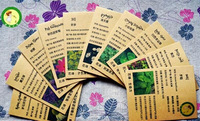 Free shipping 10 different vanilla flower seed meal combination 500 pcs/lot