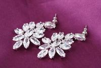 2014 new Korean fashion diamond wedding commemorative romantic flowers earrings  CER0020-B