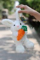 Plush Toys Rabbit Doll Hold Pillow Doll