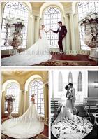 Korean version of The Princess Bride diamond lace wedding dress trailing Bra