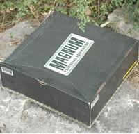 MAGNUM VIPER PRO  5 inches black secret tactical boots