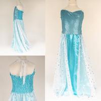 Hot ! Kids Girls Cosplay Dress Reine Des Neiges Disfraz Frozen Princess Anna & Elsa Costume Congelados Princesa Ropa Nino CW-20
