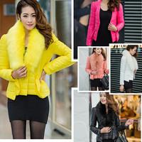 2014 Ladies Coat Women Winter Outerwear Clothes Fur Coat Woman Short Paragraph Jacket Slim Down Coat Candy Color New AY655925