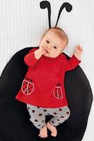 2015 christmas casual child clothing baby  Ladybug animal red suits  kids girls long sleeve T-shirts  + Pants sets