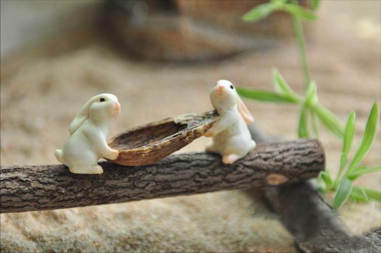 gnomos de jardim venda : gnomos de jardim venda:Fairy Gardens Miniature Animals
