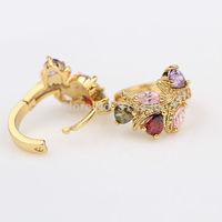 Top quality 24K yellow Gold Filled girls womens earrings Five kinds Austrian Crystal Hoop Earrings