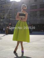 The new European and American temperament tutu umbrella wasp waist classic retro big swing skirt lady skirts