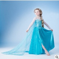 Retail Free shipping New Arrival girl costume,frozen elsa dress,princess dress