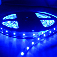Non-Waterproof 5M 3528 SMD LED 600 Leds Flexible Strip Lights For Christmas Decoration, RGB/Warm/Cool White/Red/Blue 3528-600D