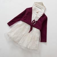 Girls Sweet Princess Dress, girls tutu dress ,  5pcs/lot   DMJ23