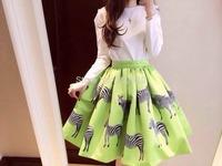 2014 spring and summer new wave of fun zebra print umbrella skirt tutu skirts