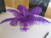 FREE SHIPPING 100pcs 10-12inch Purple Ostrich Feather plumes for wedding centerpiece wedding party decor