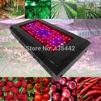 Wholesale 240w Full spectrum led grow light Plant Panel lamp for Hydroponics Grow tent Greenhouse Plants Veg&Flower