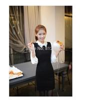 Free Shipping Women Winter Autumn Dress,Beauty  Full Sleeve Dress