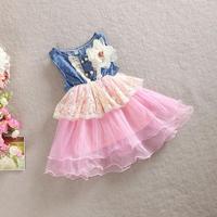 Girl cowboy flower dress, girls tutu dress ,  5pcs/lot   WMX23