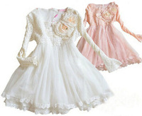 Wholesale Long Sleeve Embroidery Mesh Gauze Princess Dress Flower Girl Tulle Dress Children Party Dress Pink Cream