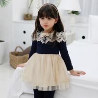 Girls lace  princess dress,girls dresses children ,5pcs/lot   LQ01