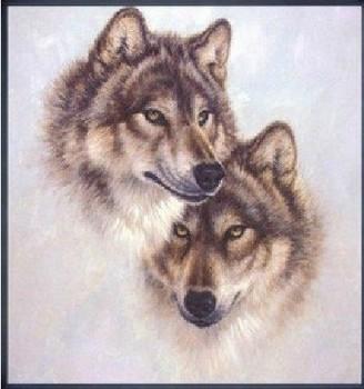 Бесплатная доставка DIY волк узоры вышивки крестом рукоделие печатные комплект для комплект для вышивания крестиком крючком