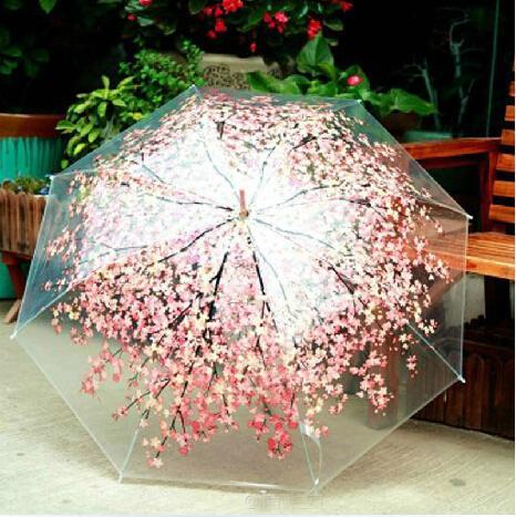The cherry blossom umbrella small pure and fresh of umbrella Creative goddess girlfriend transparent umbrella(China (Mainland))