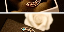 brand X brooches igh quality luxury zircon Colourful brooches fasion women jewlery wholessales new 2014 BV00020