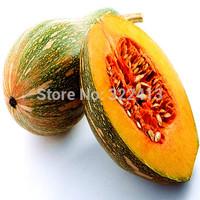 Farm - Pumpkin No. A1 - vegetables, melons seeds (seeds) package home garden seeds - free shipping