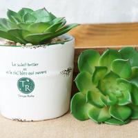 Artificial Saussurea involucrata decoration flower simulation flower  fleshier plant free shipping to USA
