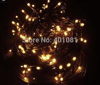 OEM order dark green cable warm white 300 LED 30m Christmas Xmas Holiday Garden outside Party String Light,Christmas led light
