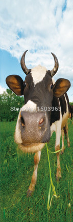 animal 3D card cow lentucular 3D bookmark for promotional gift(China (Mainland))