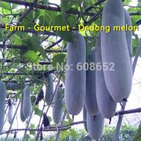 069 Giant - Dadong melon - Seed - Farmland - (seeds) Free shipping