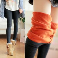 S-XL New Women's Plus Velvet Thickening Leggings High Quality Cotton Winter Legging Elastic Skinny Pants Warm Leggings 5 Colors