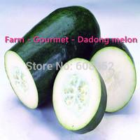 Free shipping-Farm - Gourmet - Dadong melon (seeds)