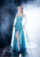 2014 Movies Frozen Elsa Cosplay Costume Dress tailor Adult Fancy Women Long Dress Free Shipping
