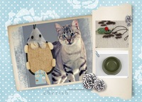 Free Shipping!2014 one set of three for scratchers  for cat ,mouse,bowl