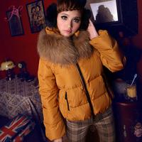 2014 New Winter Women  Down Jacket with Raccoon fur collar Desgiaul Short-Length Down Jacket Cute Girl Warm Coat