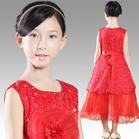 2014 New Hot Brand Baby Girls Dresses girls Princess Party Dress, Cute Frozen Tutu Qaulified Perform Cloth, Princesses Dress H06