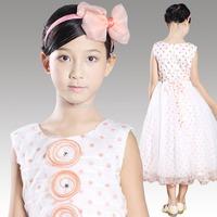 2014 New Hot Brand Baby Girls Dresses girls Princess Party Dress, Cute Frozen Tutu Qaulified Perform Cloth, Princesses Dress H26