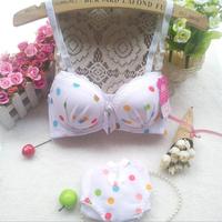 New 2014 Brand Women Japanese Autumn -summer Dot Lace Sexy Bra set Push up Bra & Brief Sets