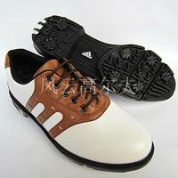 Loss promotion golf shoes for men men's golf shoes